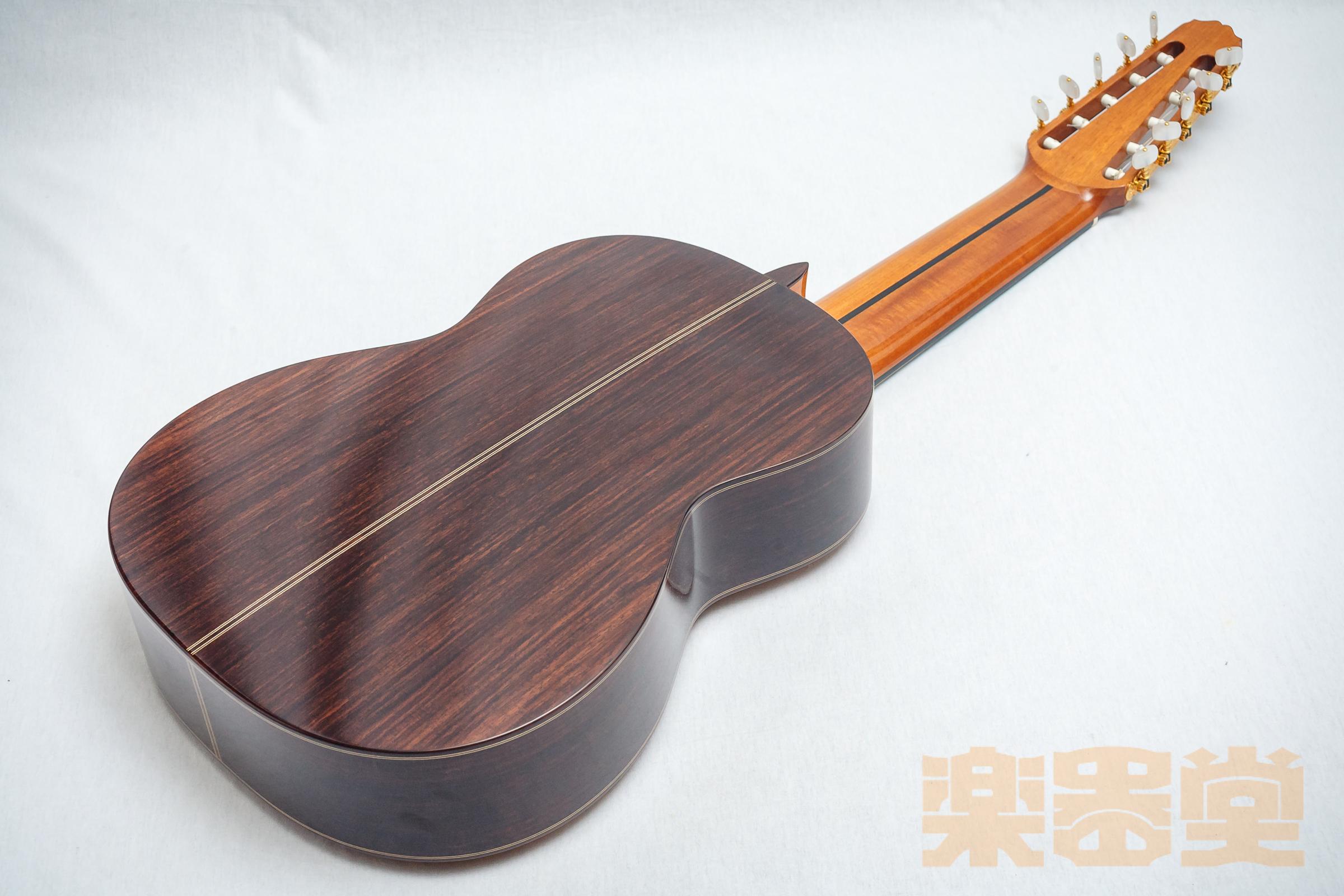 asturias-10-string